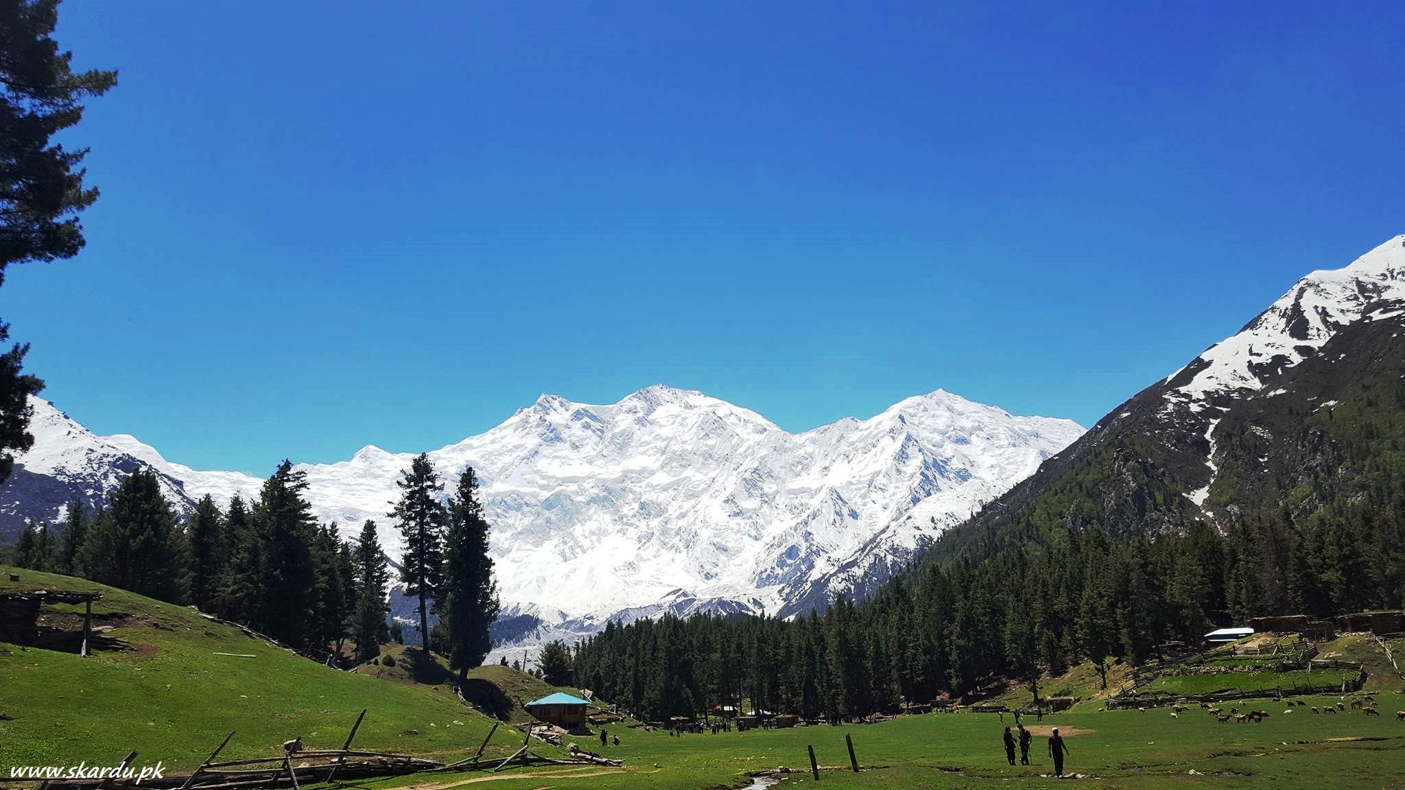 Nanga Parbat Highest Mountains