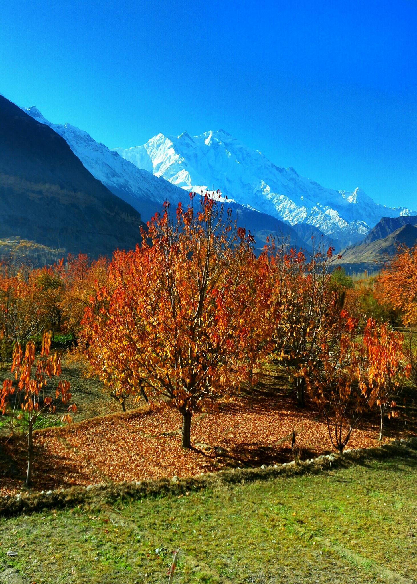 Hunza in Autumn