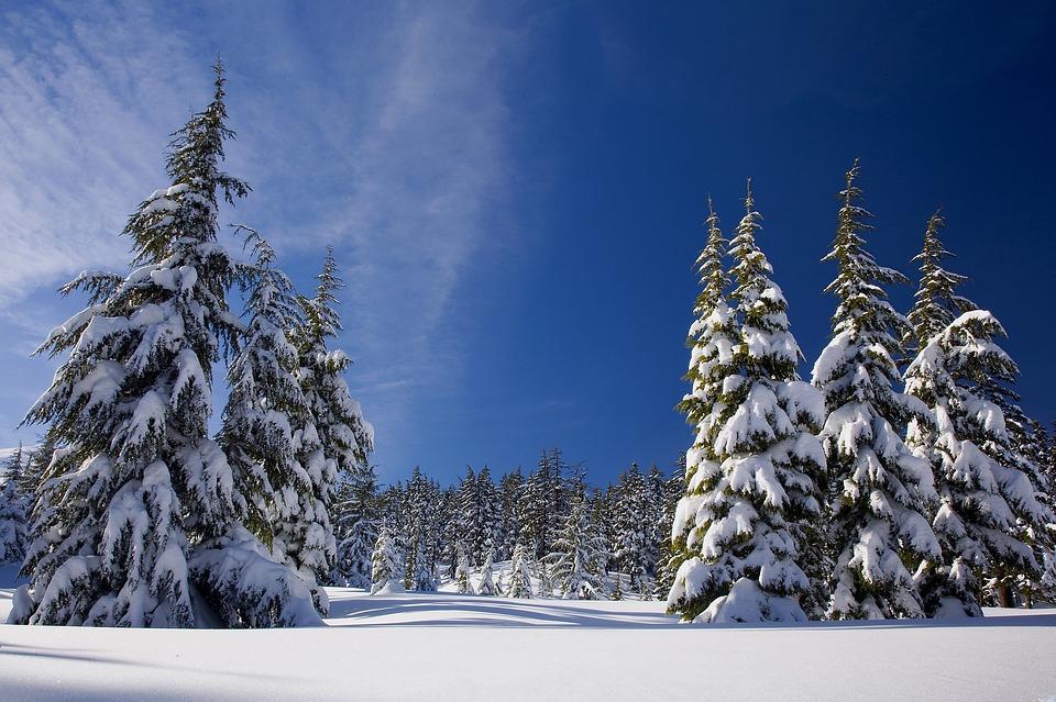 Murree Snowfall