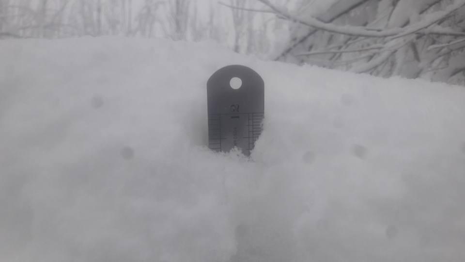 Skardu Snow