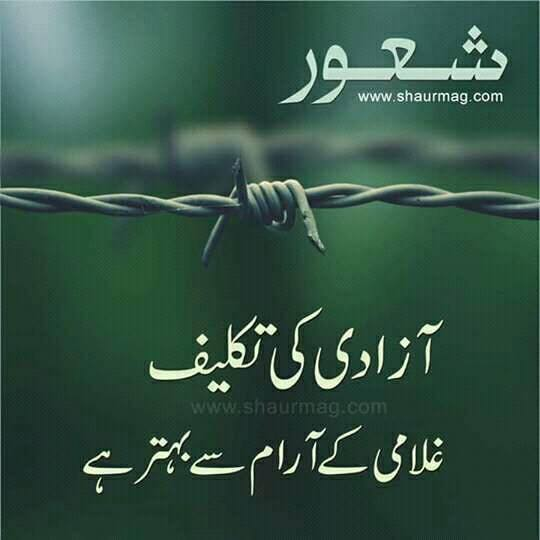 Jashn e Azadi Pakistan Independence Day