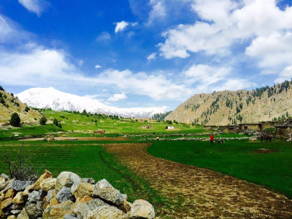 Rupal Valley Astore