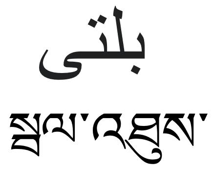 Balti Purgi Kargil